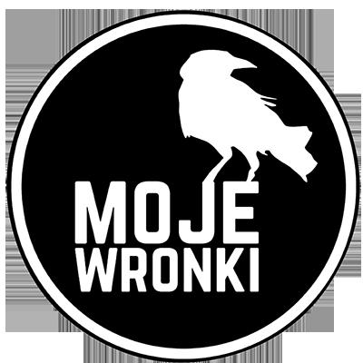 Kolizja w Bobulczynie - mojeWronki.pl - wiadomości | kultura | sport - Moje Wronki w jednym miejscuWiadomości, wydarzenia, zdarzenia, wypadki, sport, kultura, kino, polityka, apteki, prasa – wszystko co chcesz wiedzieć z gminy Wronki.