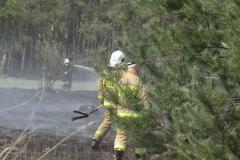 Pożar-Trynka-23-04-19-1