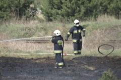 Pożar-Trynka-23-04-19-15