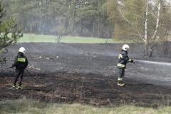Pożar-Trynka-23-04-19-18