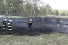 Pożar-Trynka-23-04-19-2