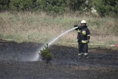 Pożar-Trynka-23-04-19-20