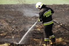 Pożar-Trynka-23-04-19-6