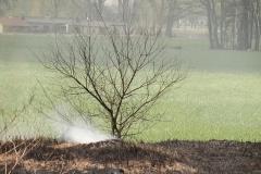 Pożar-Trynka-23-04-19-8